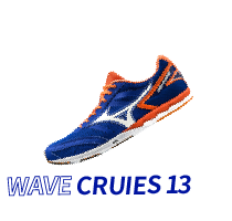 WAVE CRUIES 13